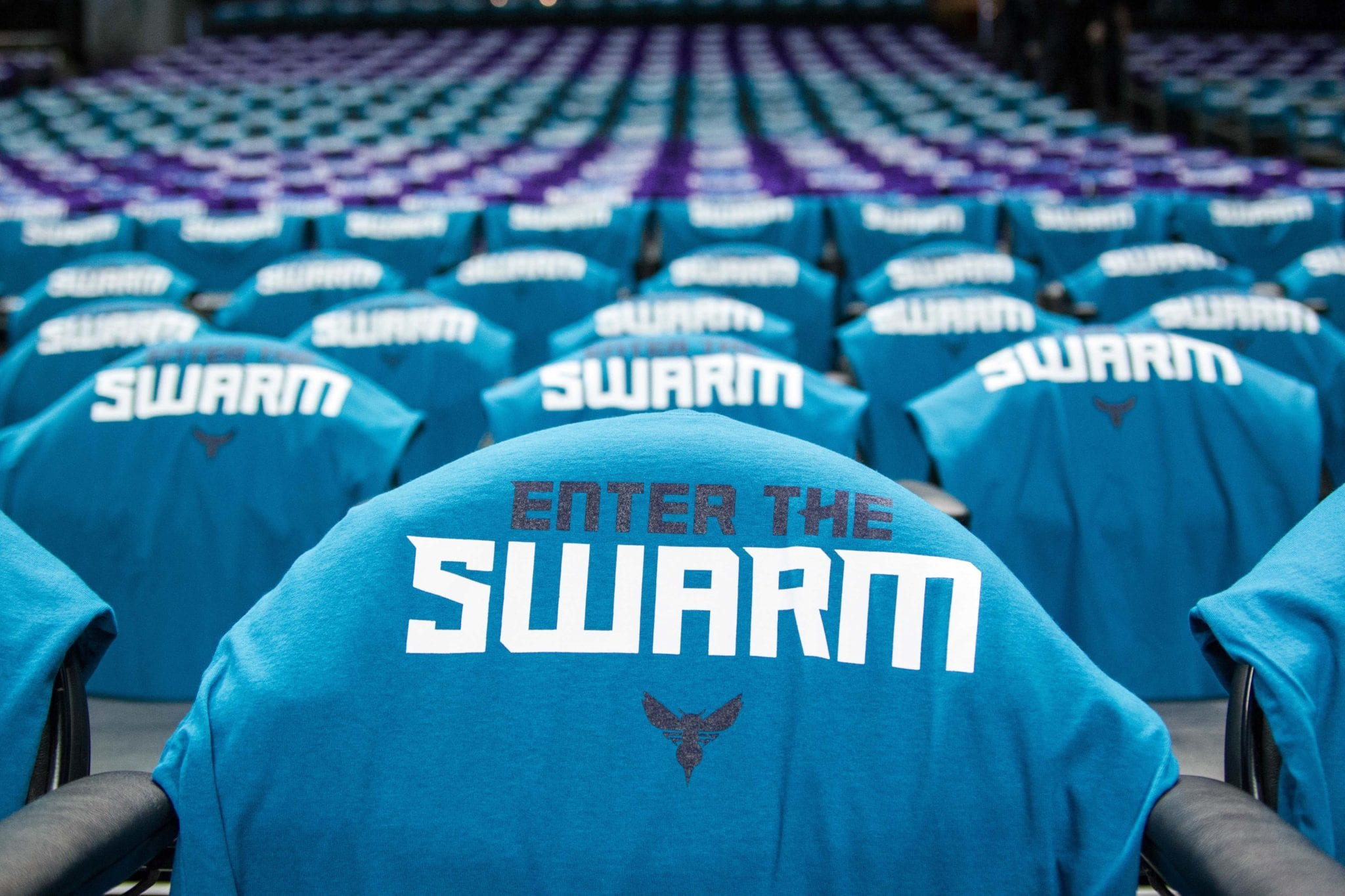 10 facts about the charlotte hornets we are basket